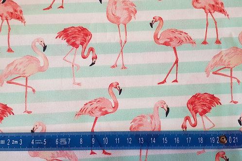 001. Flamingo