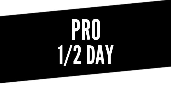 Half Day Pro Driver Training