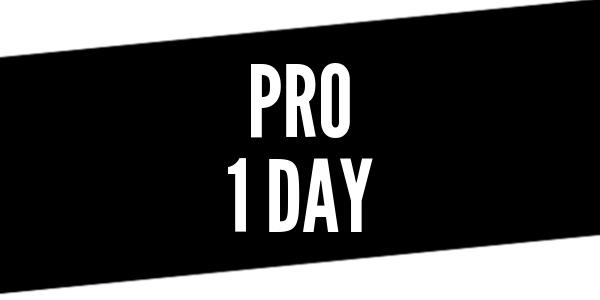 Full Day Pro Driver Training
