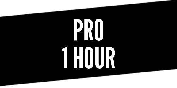 1 Hour Pro Driver Training