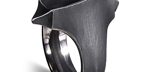 copy of Mr. Graham Spear Double Pointed Ring