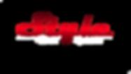 логотип с белыми элементами.png