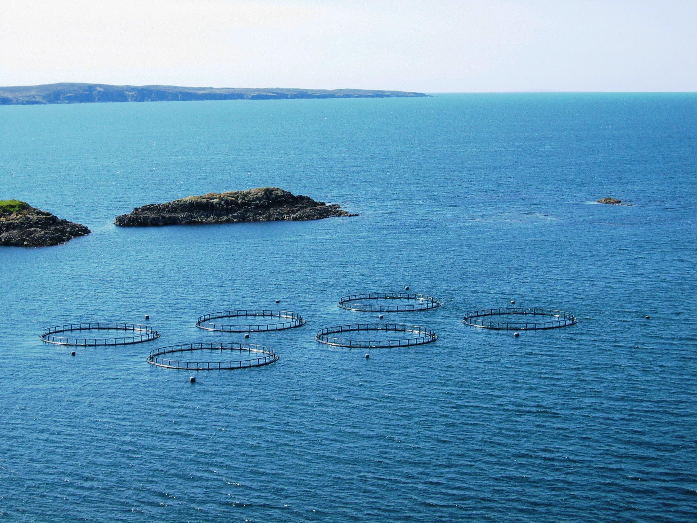 Aquaculture-Units1_Google