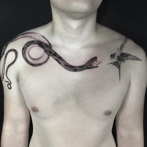 blackwork snake and hummingbird tattoo by Daniel Snoeks at Third Eye Tattoo