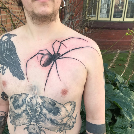 large spider chest tattooo by Bugsy at Third Eye Tattoo Melbourne