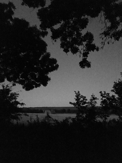 An Evening Walk 16