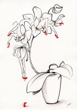 """""""Orchidelles"""""""