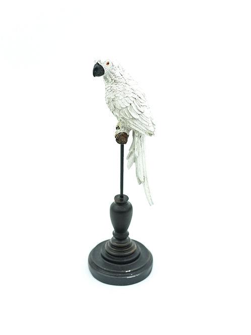 Papukaija koriste-esine