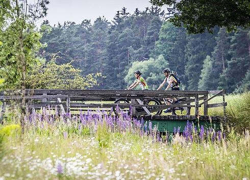 Horní Falc, Oberpfälzer Wald, cykloturistika