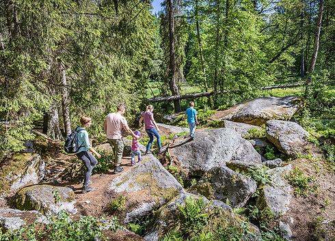 Horní Falc, Oberpfälzer Wald