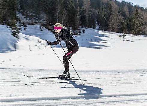 Český les, lyžování