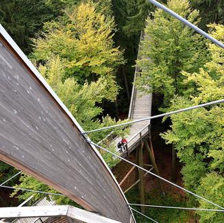 Tourist-Info Bayerischen Wald -Cham