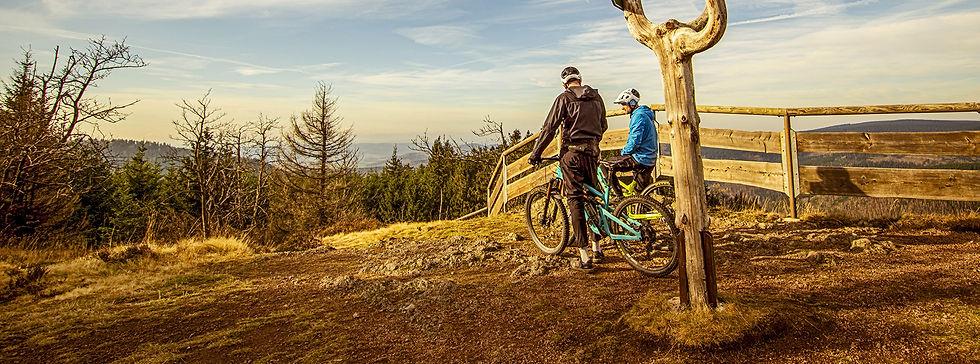 Český les cykloturistika