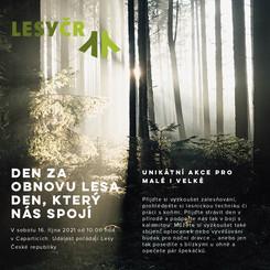 Den za obnovu lesa Den, který nás spojí