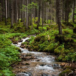 Přírodní rezervace a chráněné krajinné oblasti