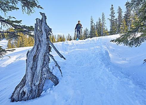 Bavorsko lyžování