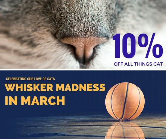 Whisker Madness