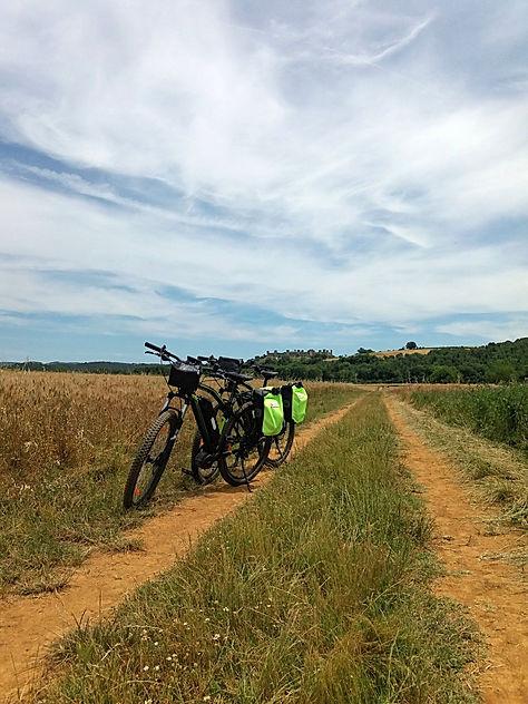 Lungo la Via Francigena in terra Siena (
