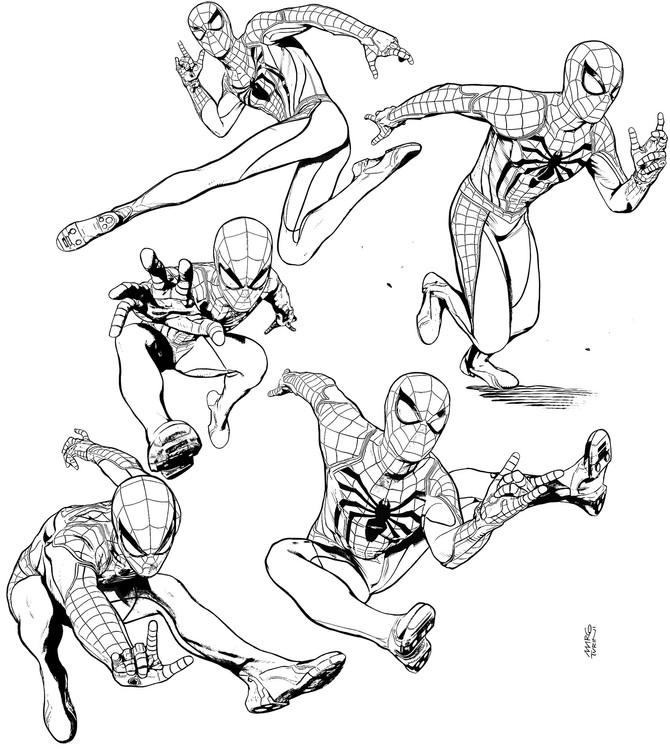 Spider-Man studies!