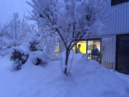 大雪が降りました