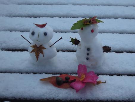 雪だるま/2013