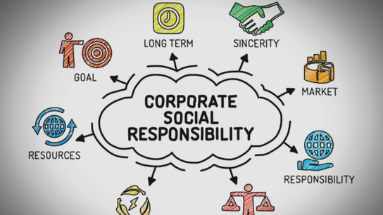 State of play of Corporate Social Responsibility (CSR)