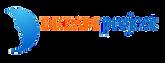 DREAM+logo.png