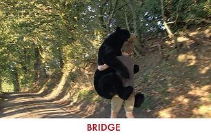MB_BRIDGE.jpg