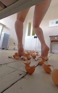 egg_legs_web.jpg