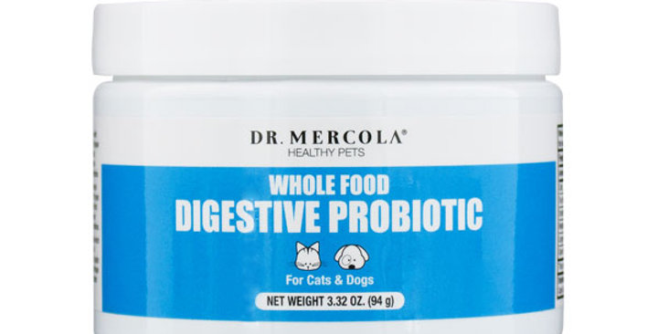 Whole Food Digestive Probiotic for Cats & Dogs