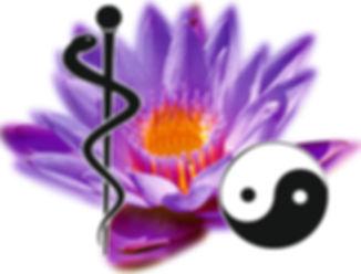 Logo_del_Centro_de_Medicina_Bioenergétic