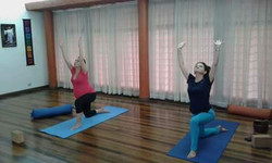 Clase de Yoga Integral fig.1.