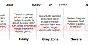 Gri Alan: Heavy (Ağır) ve Severe (Şiddetli) Egzersiz Alanları Arasındaki Boşluk
