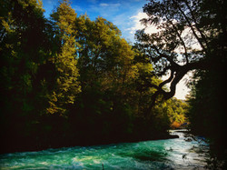 Río Fuy, Neltume