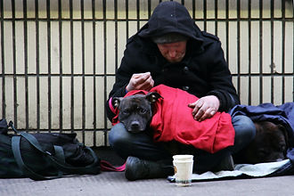 New figures show homeless deaths rose by 7.2% in fifth consecutive annual rise
