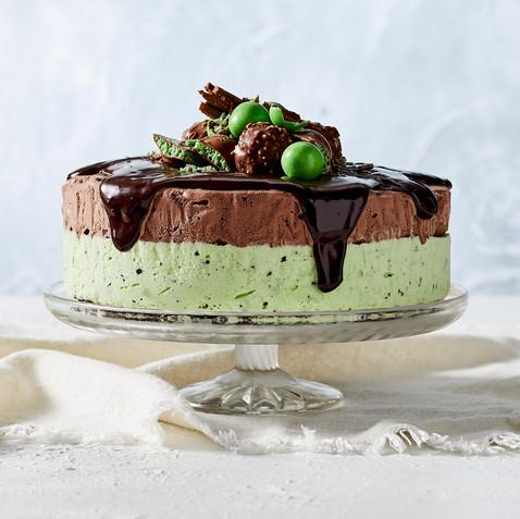 chocolate-mint-ice-cream-cake