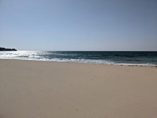 琴ヶ浜の『チーナカ豆』は29日から再開します。