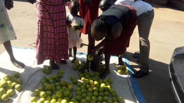 Better than importing food from Uganda. ONMI staff, impacting a local economy in RSS