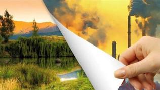 Нефть и нефтепродукты станут в ближайшие годы рудиментами - плюс для климата и природы