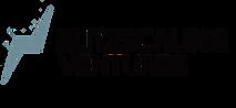 BV Logo 1 Stripe.png