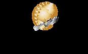 GlobalNet Logo.png