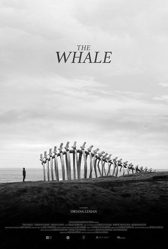WHALE POSTER.jpg