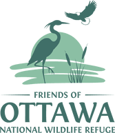 friends_of_ottawa_icon.png