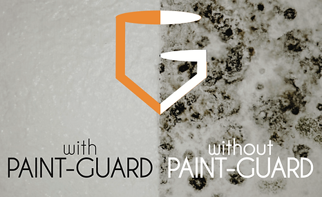 PAINT-GUARD Painted Wall.png
