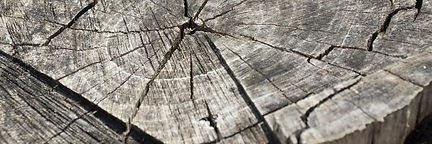rondins bois gris .jpg