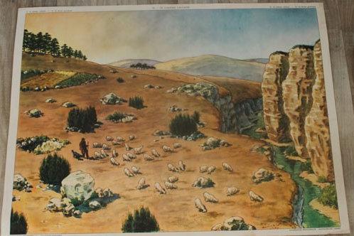 Affiche scolaire Le terrain granitique