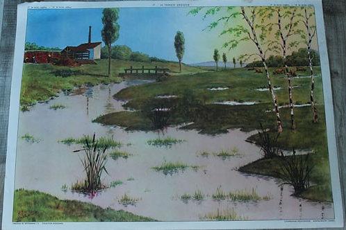 Affiche scolaire Le terrain argileux / Le terrain sableux