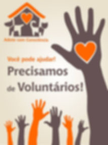 voluntarios.jpg
