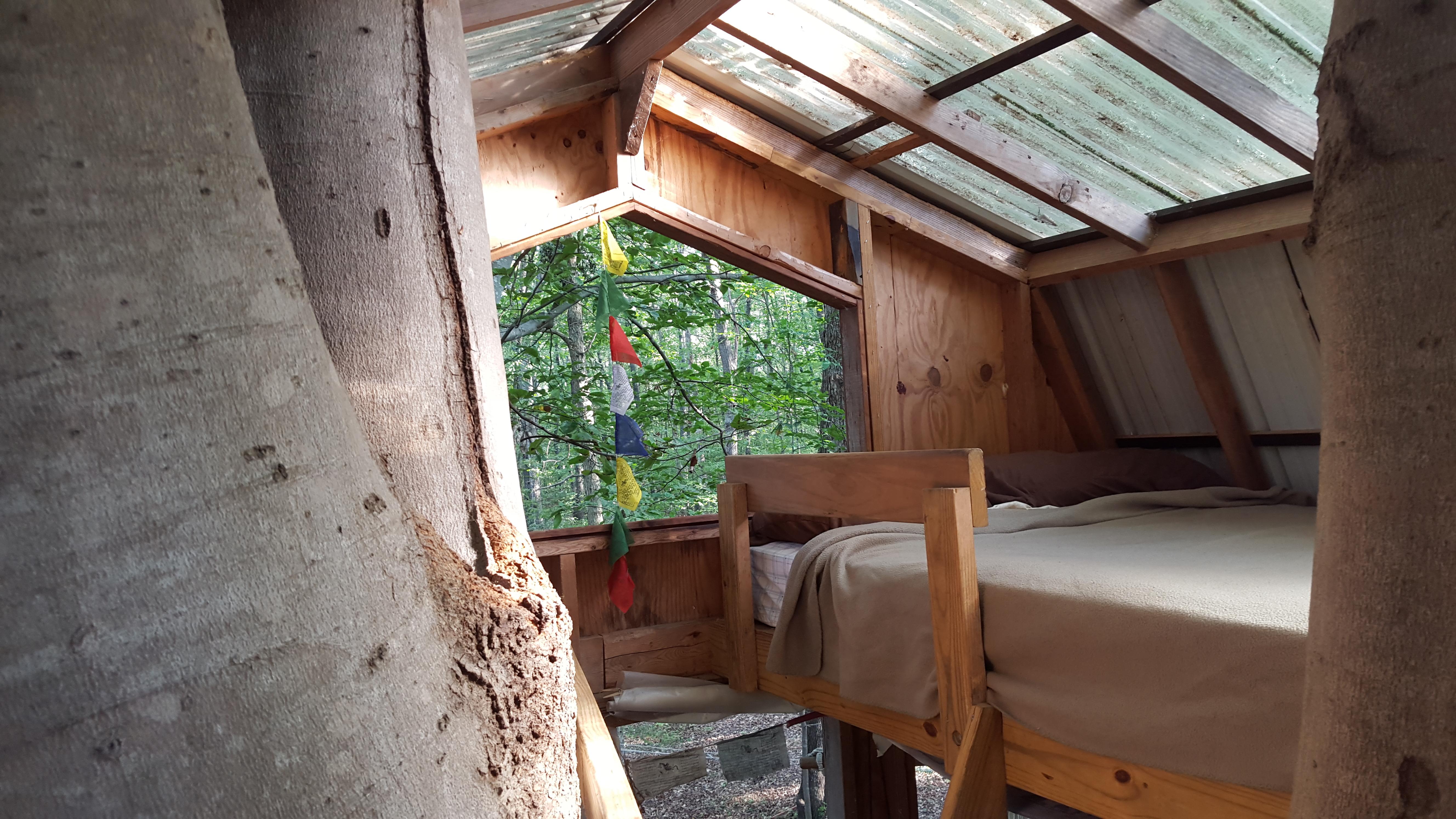 Tree House Loft