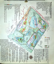 Permaculture Design Easley SC